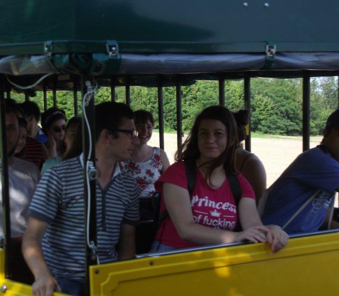 A 2018-as Kiskunmajsai Ifjúsági Tábor második napján a táborozók megismerkedhettek a várossal és meghallgathattak egy online előadást a Konecsni György Múzeumban